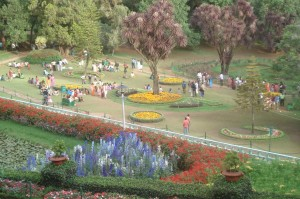 Blomsterfestival i Ootys Botaniske Have